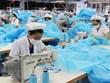 Японская фирма инвестирует в фабрику защитной одежды во Вьетнаме