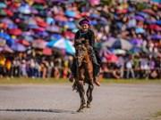 Традиционные лошадиные скачки в Бакха, Лаокай
