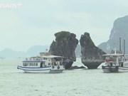 Залив Халонг вошел в список 50 лучших чудес природного туризма в мире в 2020 году по версии журнала American Insider