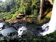 Дикая красота водопада Дамбри в проывинции Ламдонг