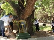 Деревья наследия - Cтолб суверенитета Вьетнама на архипелаге Чыонгша