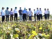 Провинция Ниньтхуан стремится увеличить производство в сухой сезон