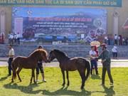 Традиционные скачки Бакха - особый культурный и спортивный фестиваль на Северо-Западе