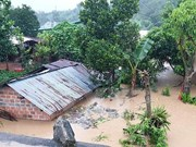 """Ураган """"Молаве"""" нанес ущерб центральному региону"""
