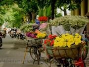 Уличные торговцы - стойкая культурная особенность Ханоя