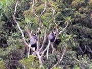 Великолепная красота биосферного заповедника Нуичуа