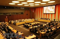 Вьетнам успешно выполнил свои обязанности председателя Совета Безопасности ООН