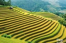 Красивые места, которые туристы не должны пропустить в Мукангтьяй