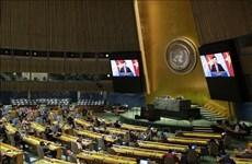 Вьетнам в Совете Безопасности ООН: от участника к партнеру за прочный мир