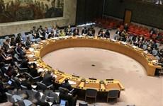 Вьетнам председательствует на заседании Совета Безопасности ООН по вопросам на Кипре и в Ливии