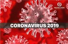 Ученые выяснили, как защитить организм от всех вирусов сразу