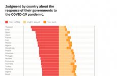 Опрос Германии: поддержка народом правительства на самом высоком уровне в мире