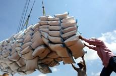 Премьер-министр одобрил возобновление экспорта риса при условии обеспечения продовольственной безопасности