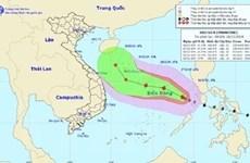 В этом году в Восточном море ожидается до 13 тропических штормов и волнений