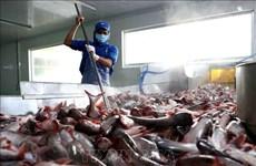 США снижают антидемпинговые налоги на вьетнамскую продукцию из сома