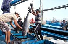Министерство Вьетнама: запрет Китаем рыболовства в районах, находящихся под суверенитетом Вьетнама, является недействительным
