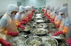 Прогноз: экспорт вьетнамских креветок достигнет 3,8 млрд. долл. США в 2020
