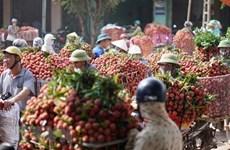 Вьетнам стремится экспортировать больше свежих фруктов и овощей в Таиланд