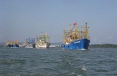 Международное сотрудничество по устойчивому развитию морской экономики