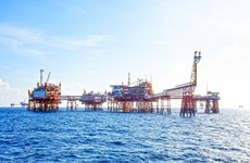 Объем добычи нефти PetroVietnam за 5 месяцев составил 8,99 млн. тонн.