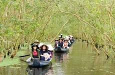 Туристические компании дельты Меконга прилагают все усилия, чтобы привлечь больше посетителей