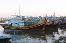 Рыболовство в центральных провинциях восстанавливается после COVID-19
