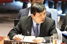 Вьетнам председательствует на заседании неофициальной рабочей группы СБ ООН по международным трибуналам
