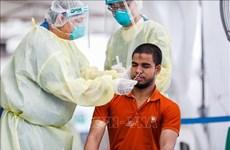 Сингапур приступит к клиническим испытаниям лекарства от коронавируса