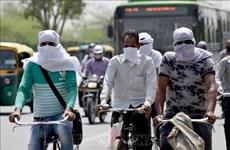 В Индии за сутки выявили почти 10 тысяч случаев COVID-19