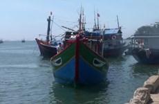 Вьетнам требует Китай расследовать инцидент, связанный с вьетнамской рыболовецкой лодкой в Хоангша