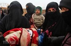 Вьетнам призывает к усилению гуманитарной поддержки Сирии