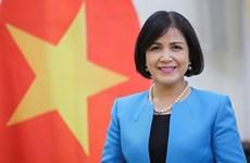 Вьетнам принял участие в заседании исполнительного совета GICHD