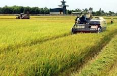 Вьетнам займет место в топ-10 мировых центров по переработке сельскохозяйственной продукции