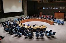 Совет Безопасности ООН принял сформулированную Вьетнамом резолюцию