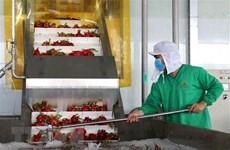 Необходимо качество для стимулирования экспорта сельхоз и водной продукции