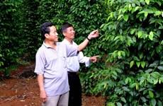 Принят проект развития органического сельского хозяйства на 2020-2030 годы