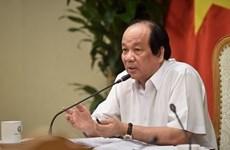 Правительственная информационная система отчетов будет запущена в следующем месяце