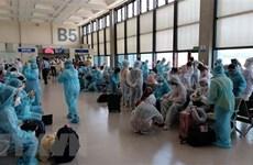 Более 240 вьетнамских граждан доставили домой из Сингапура