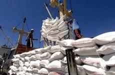 Вьетнам увеличит экспорт риса в ЕС в рамках EVFTA