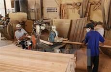 За 6 месяцев экспорт лесной продукции достиг 5,3 млрд. долл. США