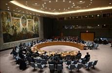 СБ ООН проведет первую личную встречу за четыре месяца