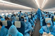 Почти 280 вьетнамцев прилетели домой из России и Беларуси