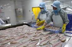 Портал поможет фирмам дельты Меконга получить представление о EVFTA