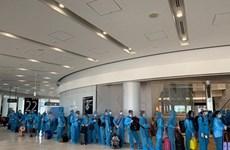 Более 220 вьетнамских граждан благополучно доставлены из Японии