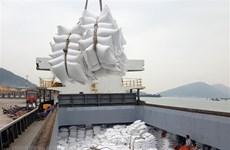 Экспорт вьетнамского риса в Африку продолжает расти