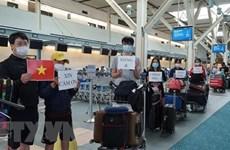 Более 310 вьетнамских граждан из РК доставлены домой