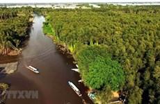 Местности дельты Меконга призваны усерднее работать для достижения годовых целей
