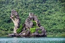 Куангнинь обладает потенциалом для развития лесного туризма