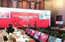 12-е совещание министров экономики CLMV прошло онлайн
