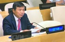 Вьетнам призывает увеличить гуманитарную помощь палестинцам